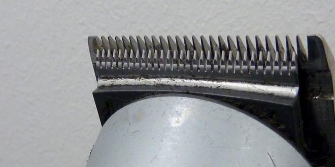 Har du brug for en ny trimmer? Stor webshop har et bredt udvalg